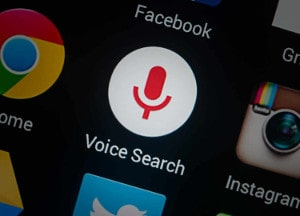 Voice Search Service